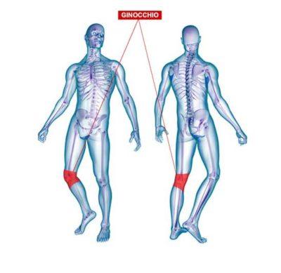 Conoscenze fondamentali sull'artrosi dell'anca